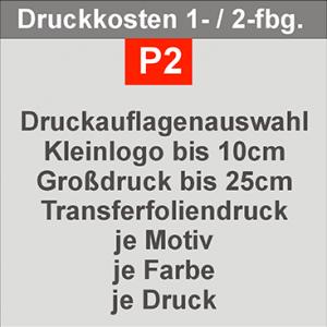 P2-300x300